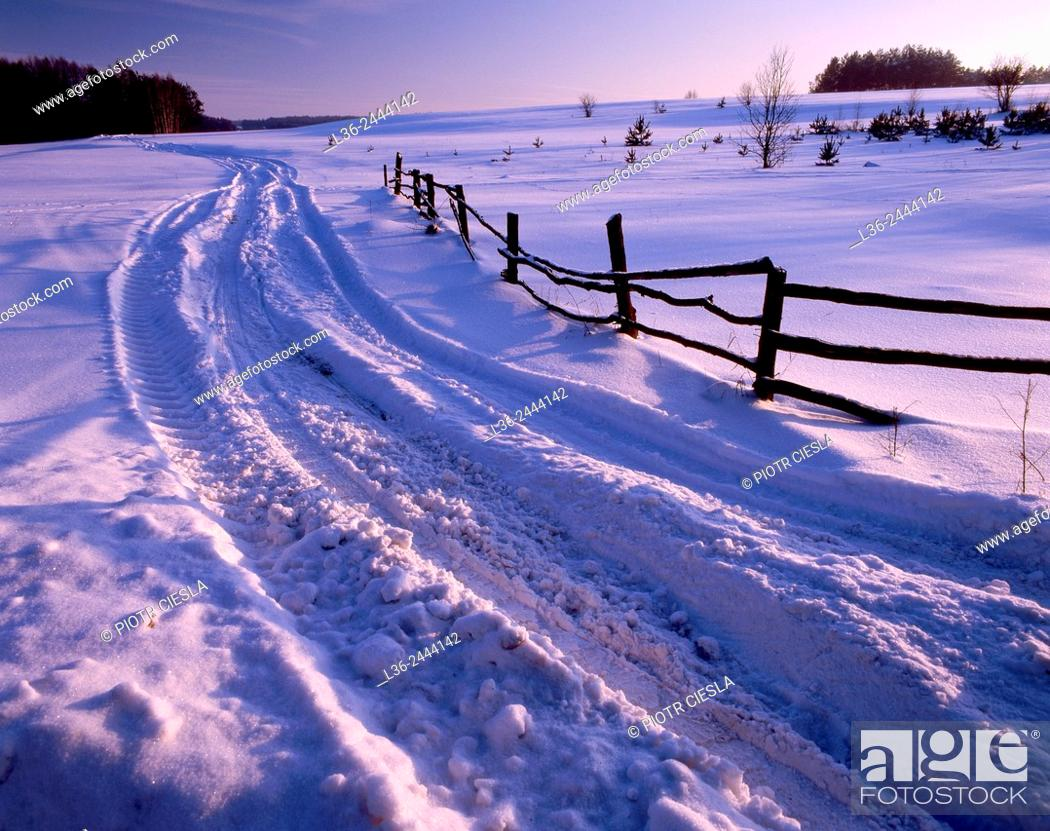 Stock Photo: Country road, Podlasie region, Poland.