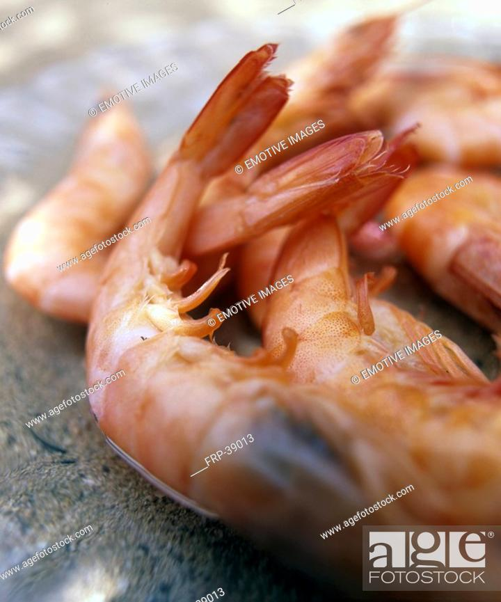 Stock Photo: Shrimps.