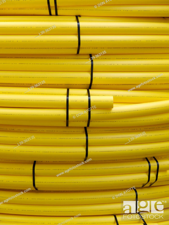 Stock Photo: Plastic hose. Amherst Woods. Amherst, Massachusetts. USA.