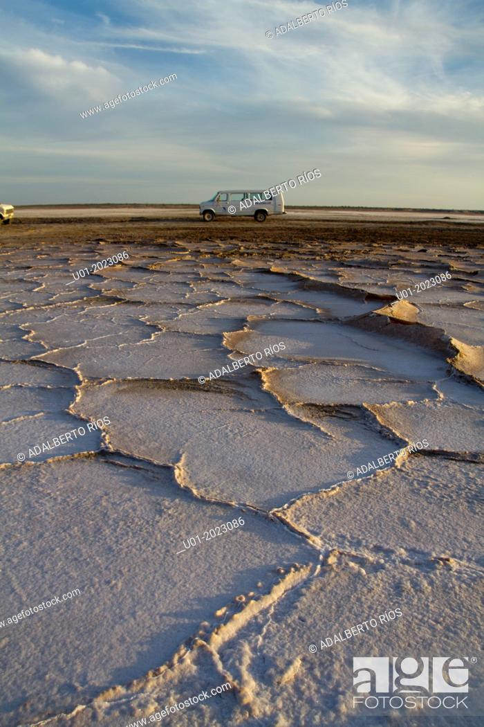 Stock Photo: In San Ignacio Lagoon in Baja California Sur there were shallow plains but due to geological changes, the sea withdrew and became salt flats.
