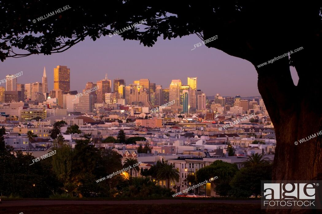 Stock Photo: USA, California, San Francisco, Financial District skyline with high-rise office buildings including Transamerica Pyramid and Bank of America Building.