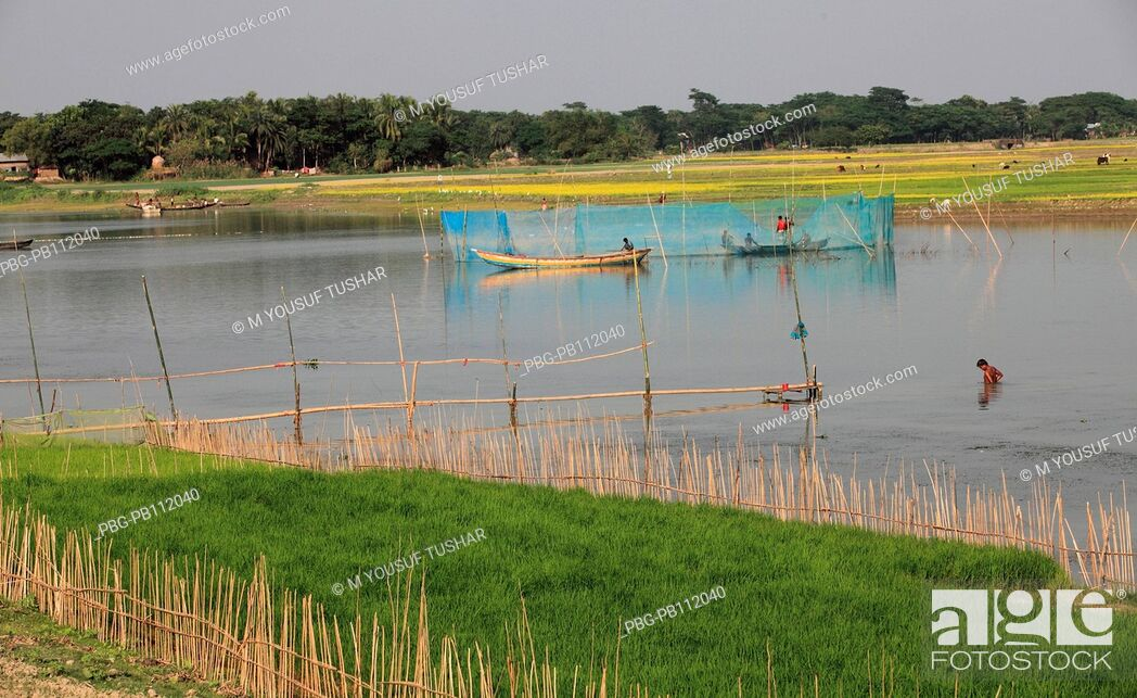 Imagen: Bangladesh is crisscrossed with rivers and canals It is a common scene in the rural especially the lowland areas to see people busy catching fish Gopalgonj.