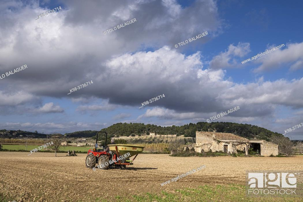 Stock Photo: rural field, Sineu, Mallorca, Balearic Islands, Spain.