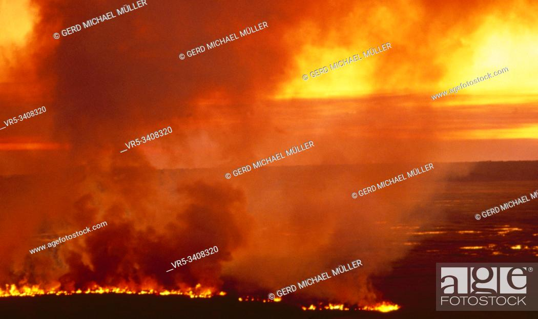 Stock Photo: Australia: A big bush fire due to the dryness due tot he global climate change.