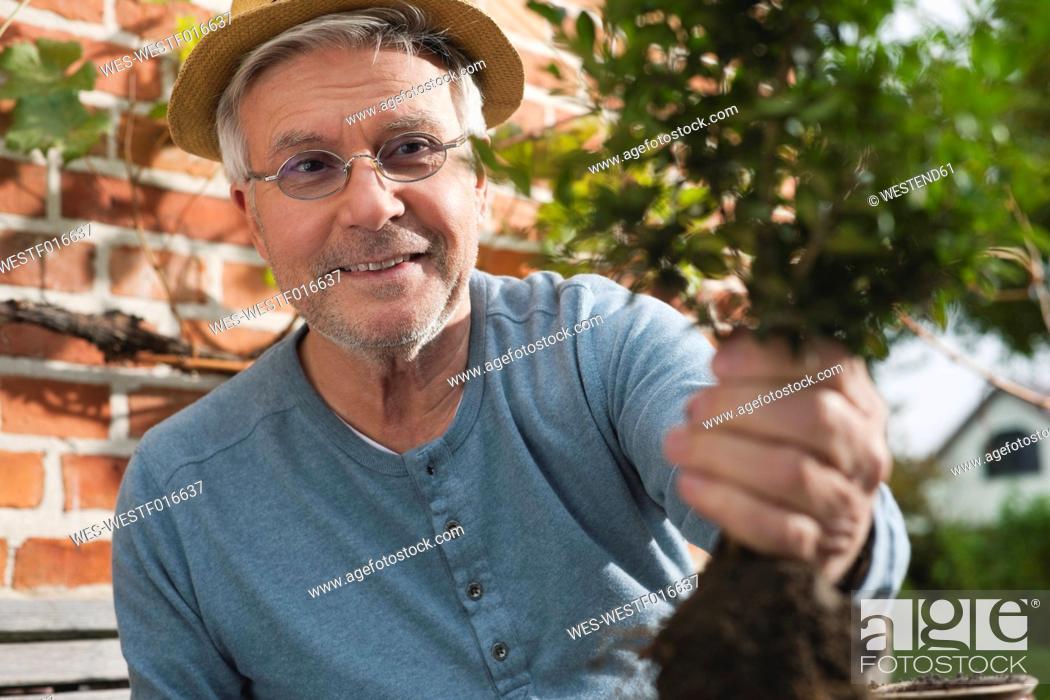 Stock Photo: Germany, Kratzeburg, Senior man doing gardening.
