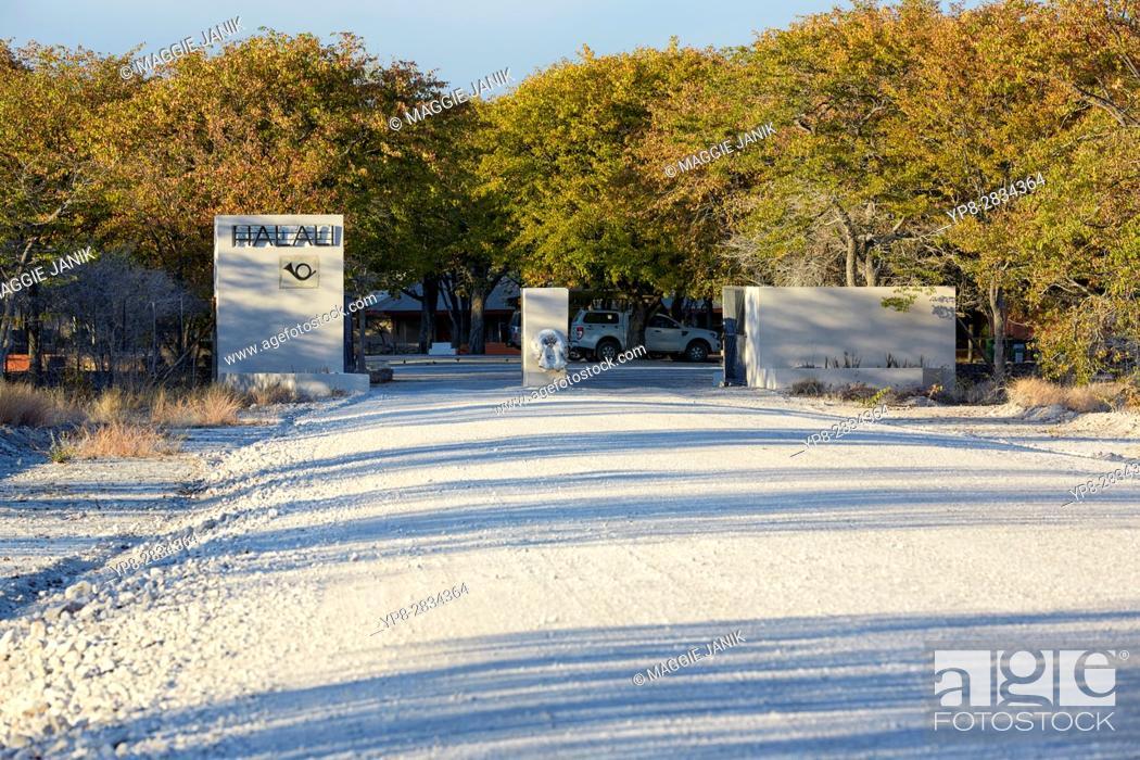 Stock Photo: Entrance gate to Halali camp, Etosha National Park, Namibia, Africa.