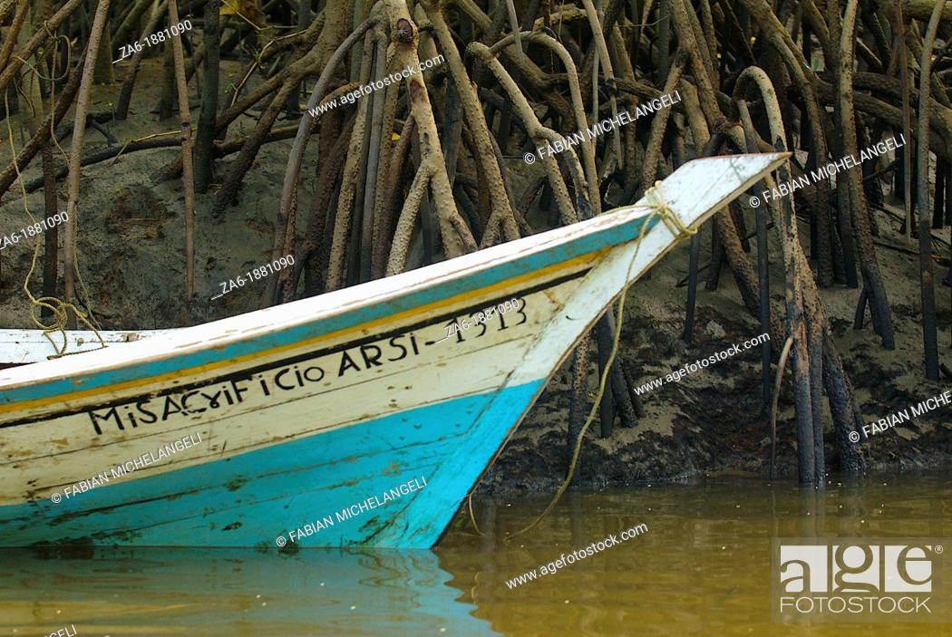 Imagen: Fisherman's boat and mangrove stilt roots in Turuepano National Park, Eastern Venezuela.