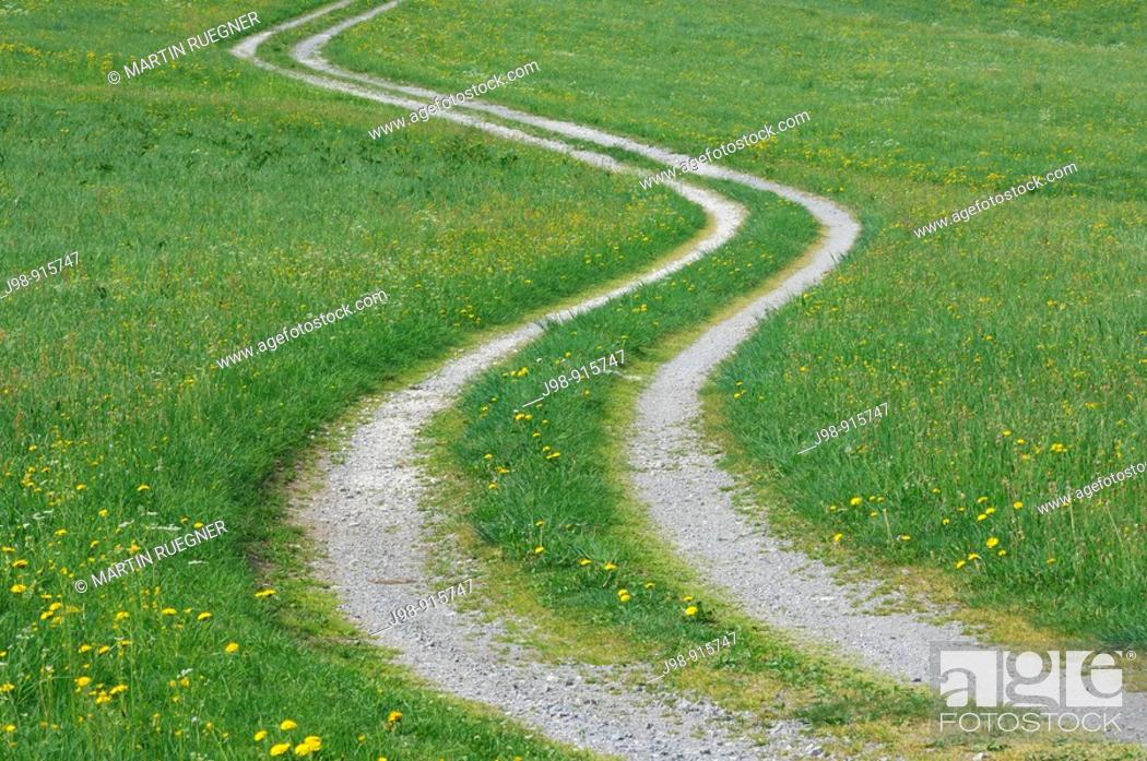 Stock Photo: Track through meadows in spring. Bavaria, Germany.