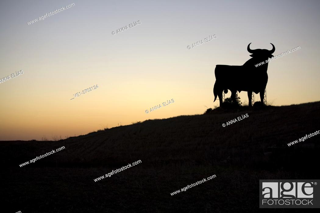 Stock Photo: Andalusian countryside landscape with bull, Andalucia, Spain, Europe.
