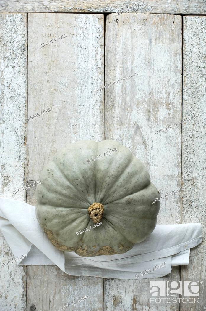 Stock Photo: A Crown Prince pumpkin.