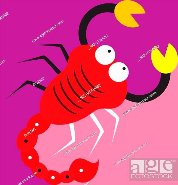Stock Photo: A Scorpio scorpion.