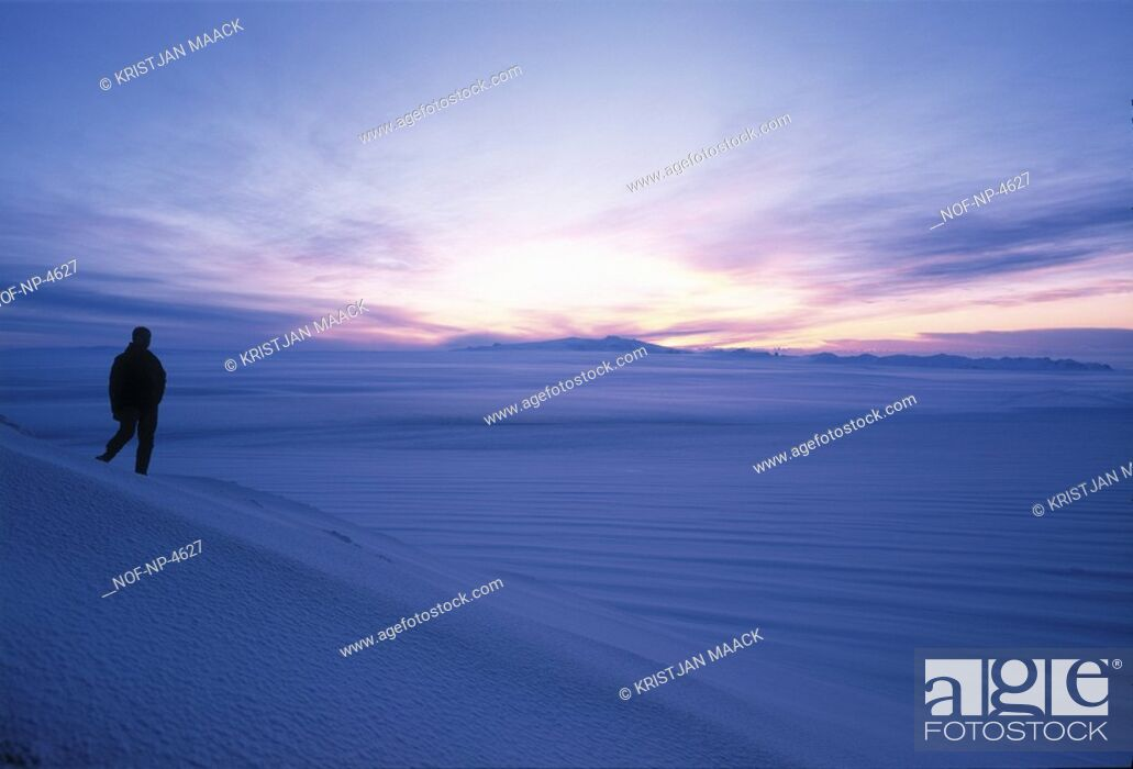 Stock Photo: Silhouette of a person standing in snow landscape at dusk.