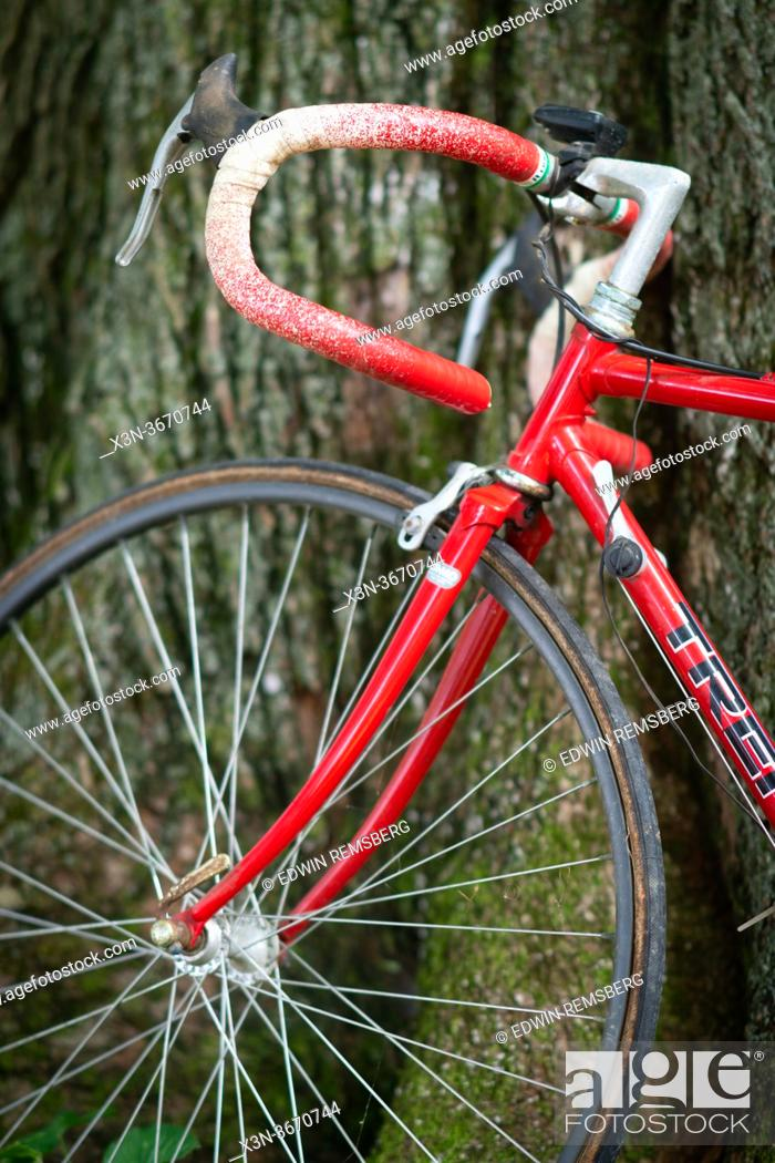 Stock Photo: Handle of red bike resting against tree in yard, Fallston, MD.