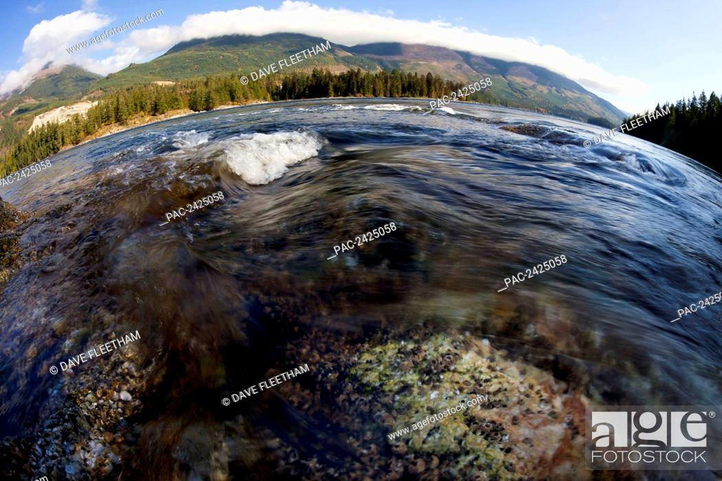 Stock Photo: Canada, British Columbia, Sunshine Coast, the Skookumchuck Narrows and Sechelt Rapids, which connects the Sechelt Inlet to Jervis Inlet.