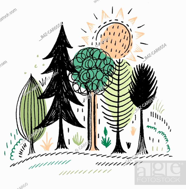 Stock Photo: A variety of trees under the sun.