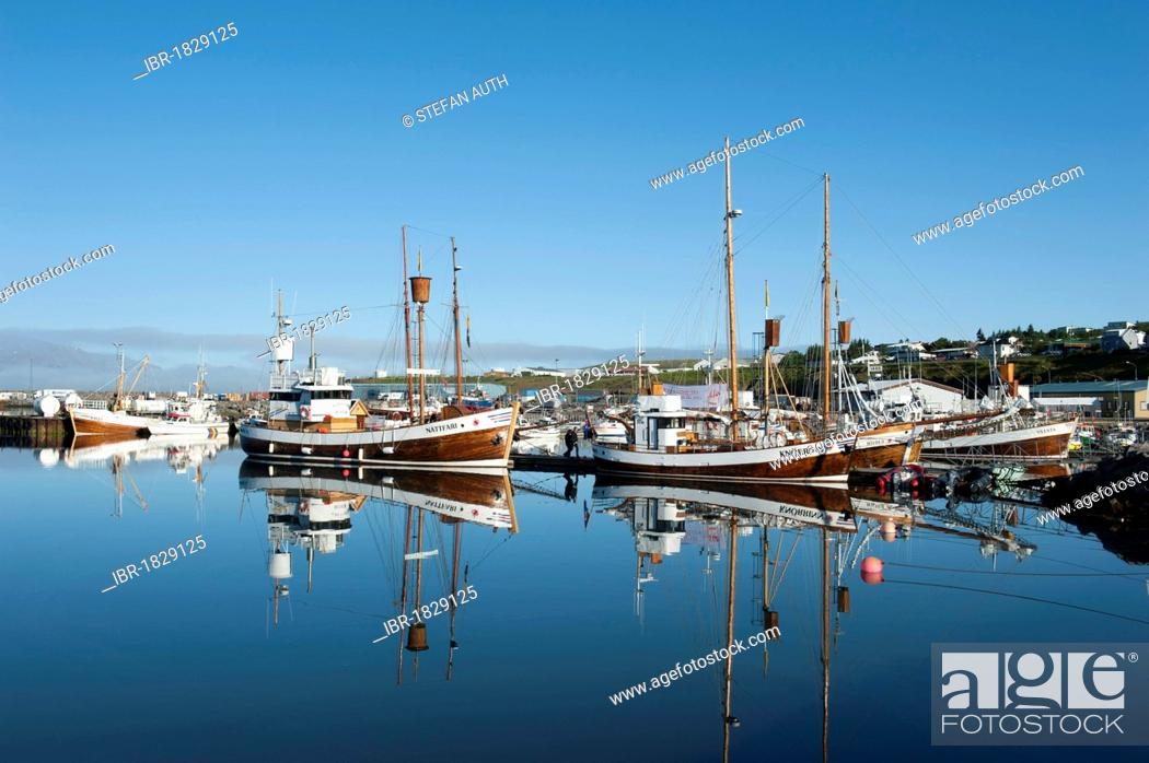 Stock Photo: Old fishing boats now whale watching boats, port of Husavik, Iceland, Scandinavia, Northern Europe, Europe.