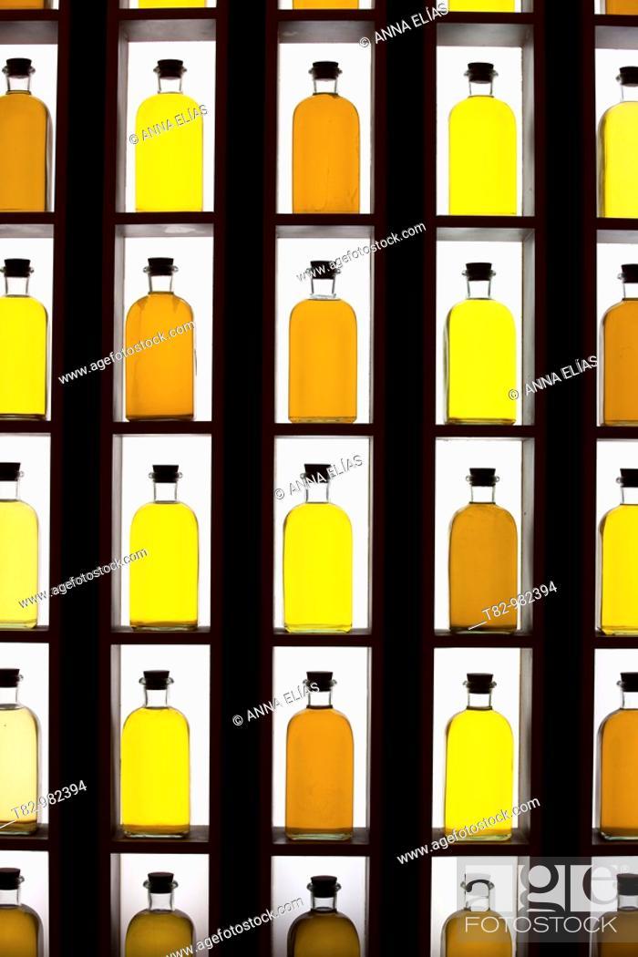 Stock Photo: botellas de aceite sobre fondo blanco, Andalucia,oil bottles on white background, Andalucia.