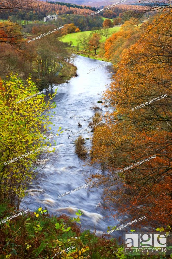 Stock Photo: View toward Barden Tower Strid Wood Wharfedale Yorkshire England.