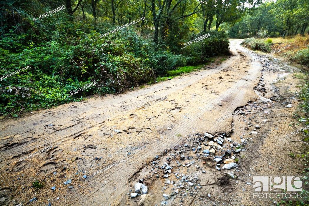 Stock Photo: Road of La Cabeza in Navahondilla Ávila Castilla León Spain.