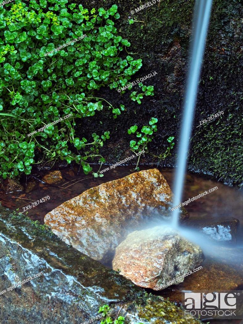 Stock Photo: Detail of Coll de Te Fountain. Montseny Natural Park. Barcelona province, Catalonia, Spain.