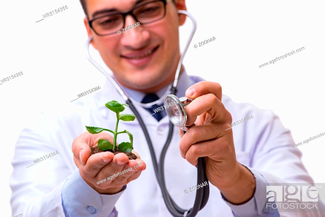 Imagen: Scientist with green seedling in glass isolated on white.