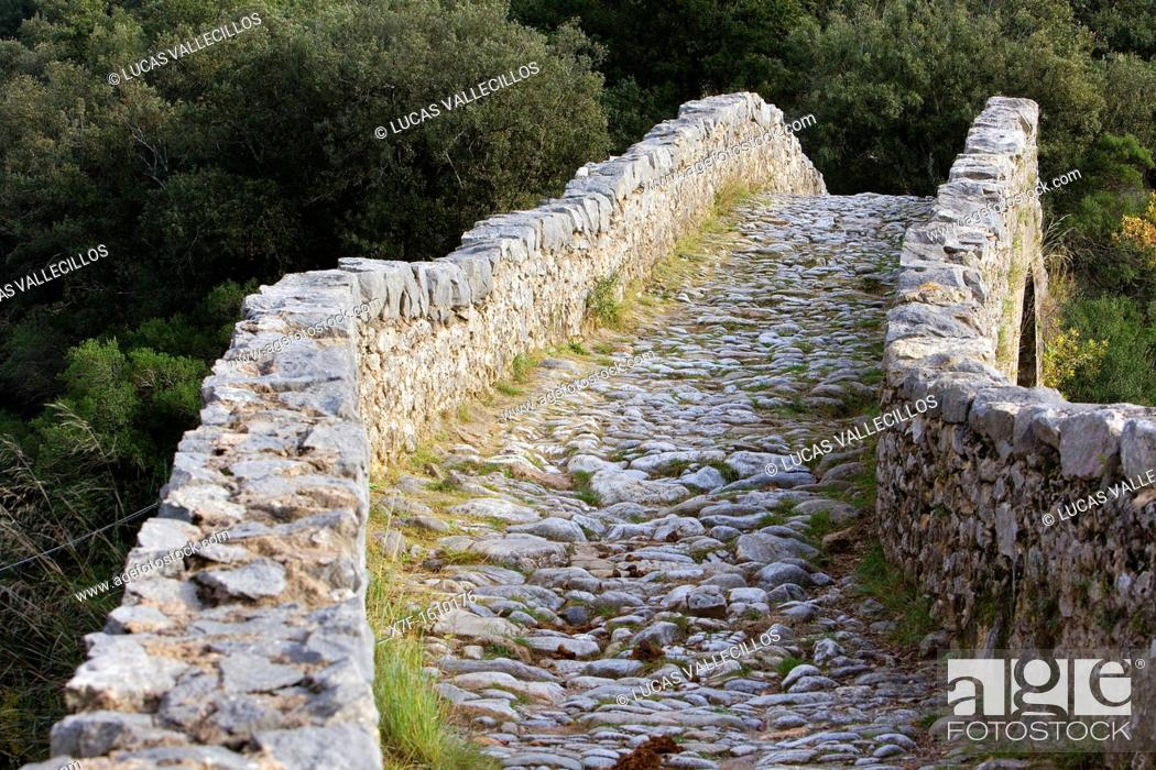 Stock Photo: Bridge over Llierca River - 14th Century -, between Sadernes and Montagut villages, La Garrotxa, Girona, Spain.