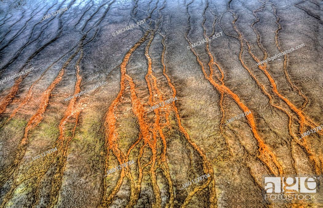 Stock Photo: Runoff from Grand Prismatic Spring creates high-color at Yellowstone National Park, Wyoming.