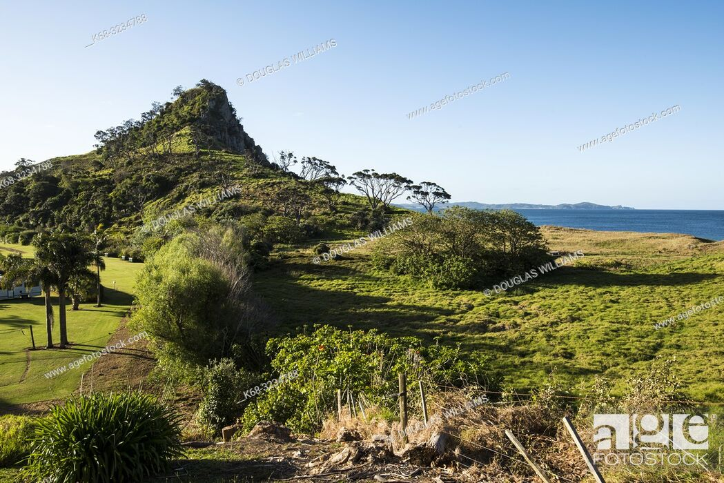 Imagen: Treasure Island, Pataua, North Island, New Zealand.