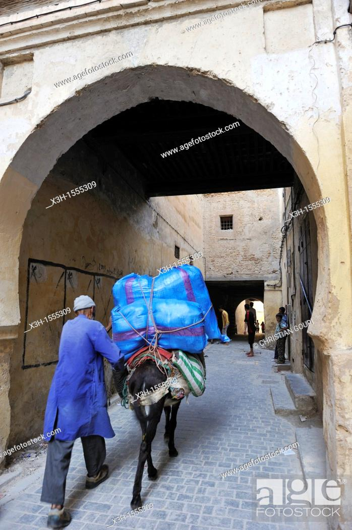 Stock Photo: pack mule in the medina, Fes, Morocco, North Africa.