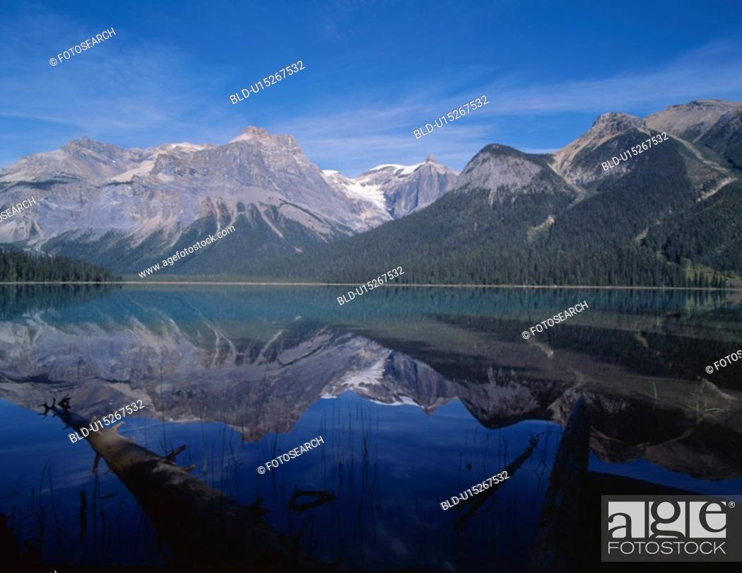 Stock Photo: forest, nature, tree, mountain, scene, river, landscape.
