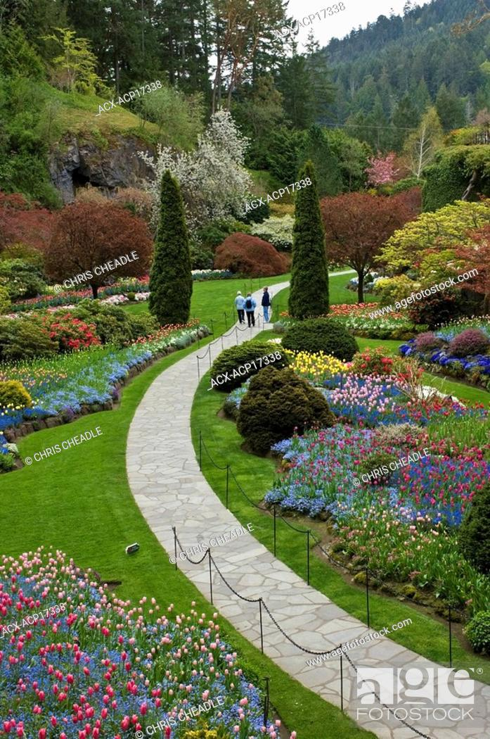 Tourists walking through sunken garden in springtime butchart stock photo tourists walking through sunken garden in springtime butchart gardens victoria vancouver island british columbia canada thecheapjerseys Image collections