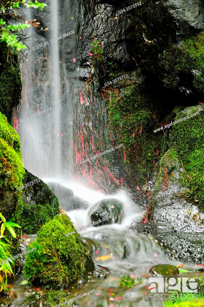 Stock Photo: Flowing Garden. Kubota Gardens, Seattle, Washington, USA.