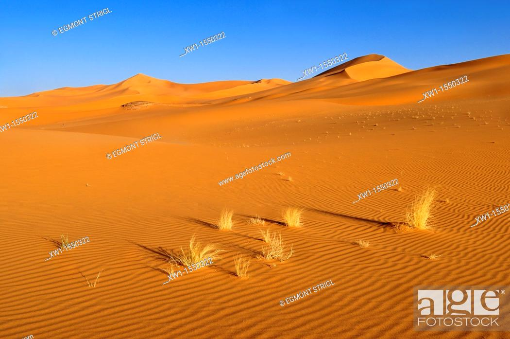 Imagen: sanddunes of In Tehak, Tadrart, Tassili n' Ajjer National Park, Unesco World Heritage Site, Algeria, Sahara, North Africa.