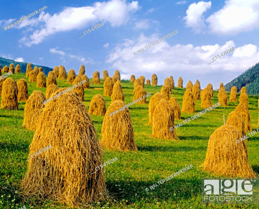 Stock Photo: Agriculture in Carinthia, Austrian alps (digital composition).