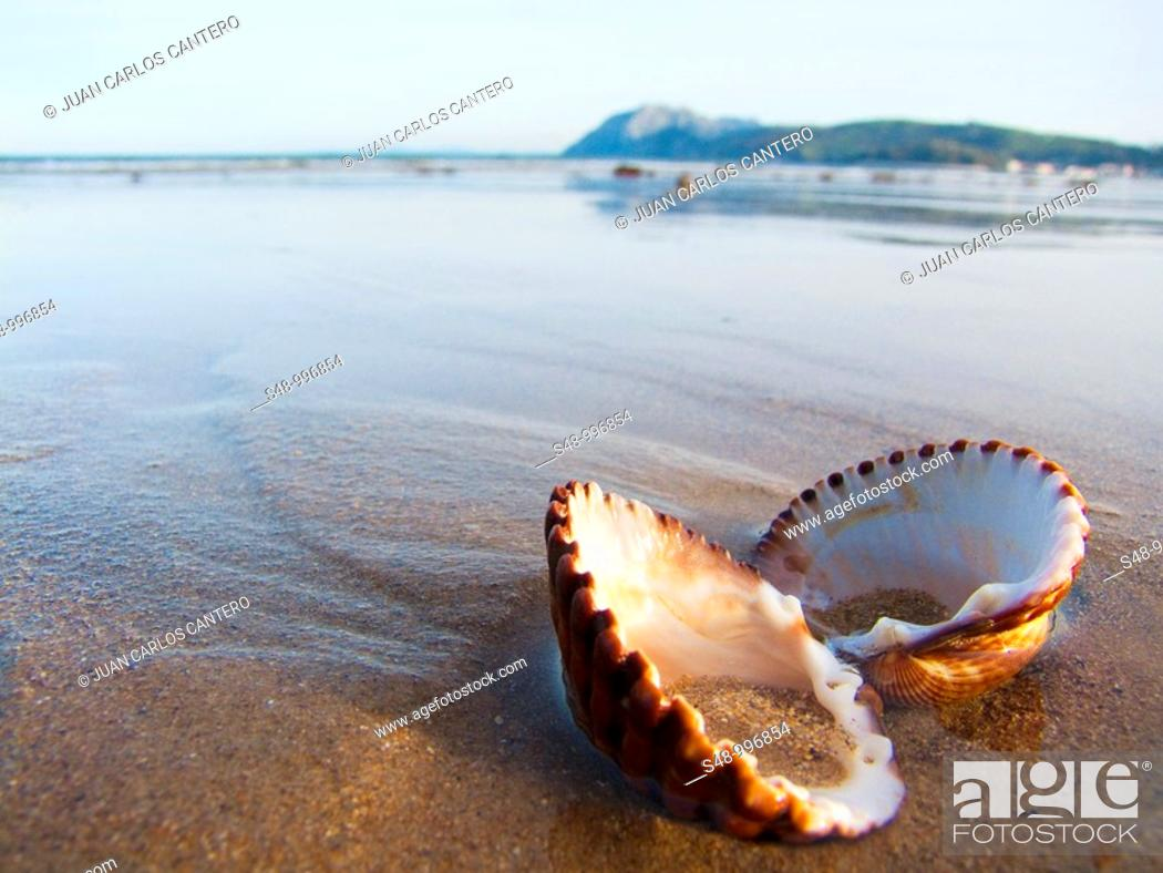 Stock Photo: Laredo beach. Cantabria. España.