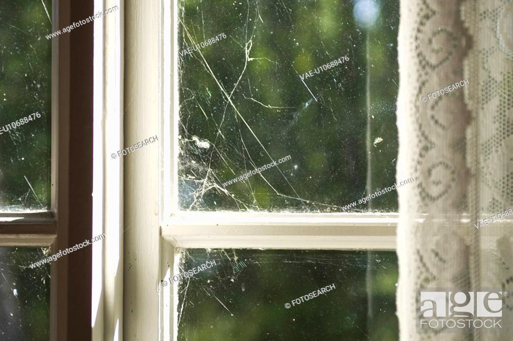 Stock Photo: Indoors, Window.