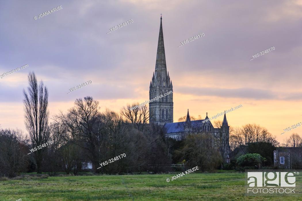 Imagen: Salisbury, Wiltshire, England, UK.