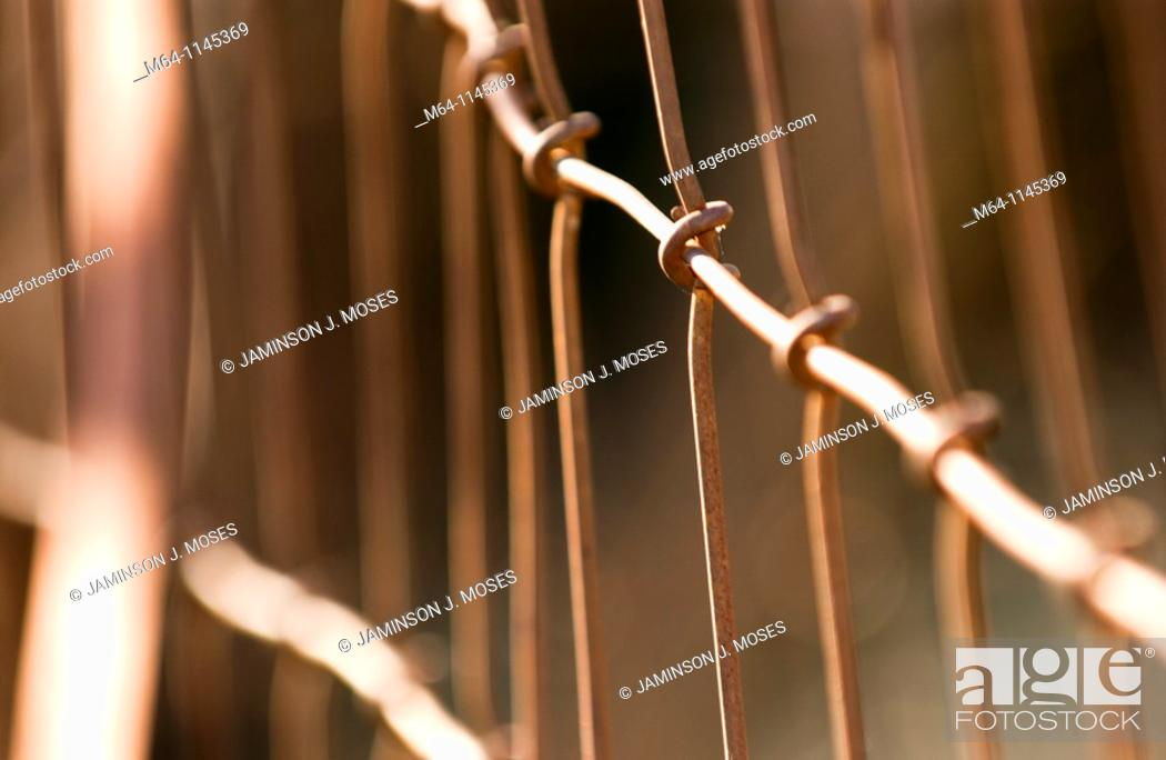 Stock Photo: Closeup of wire fence.