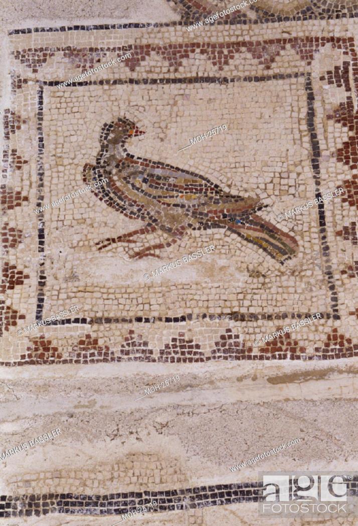 Stock Photo: Italica bei Sevilla/ Amphitheater, errichtet unter Hadrian, 117-38, Fußbodenmosaik.