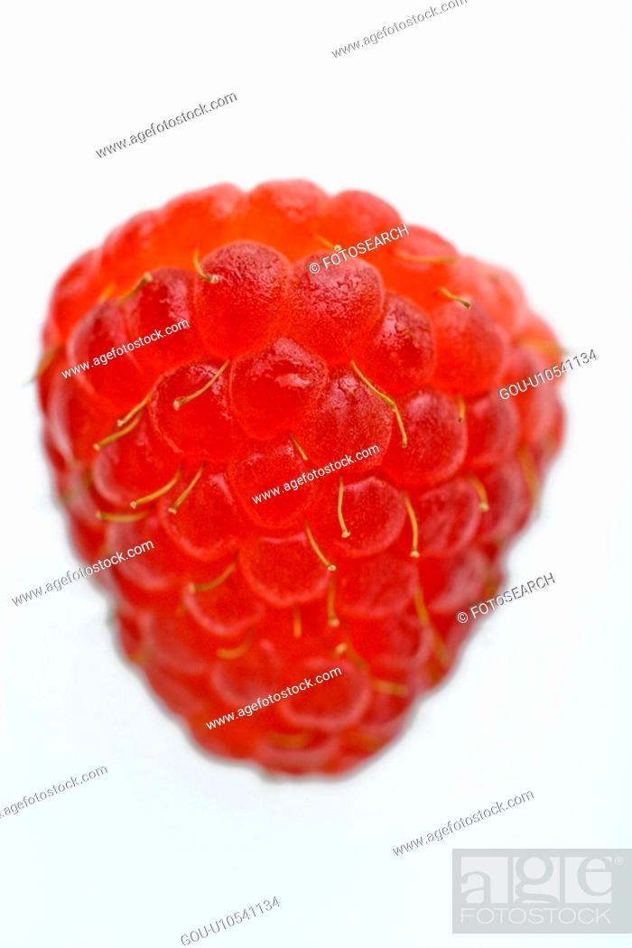 Stock Photo: One red raspberry on white background.
