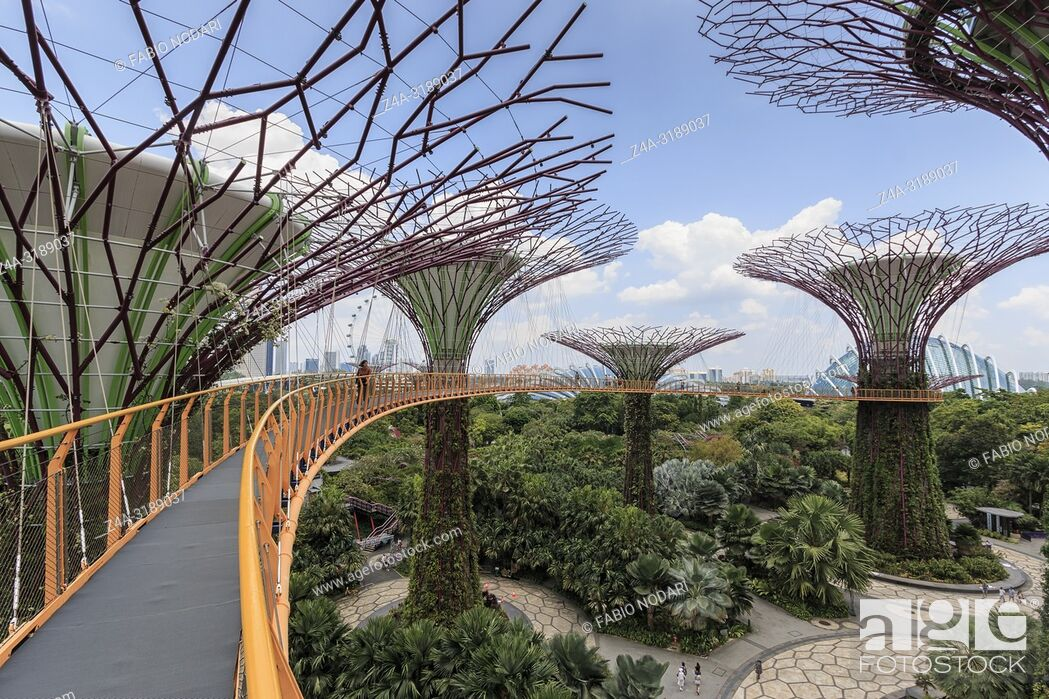 Stock Photo: Singapore, Singapore - October 16, 2018: Supetree Grove at the Gardens by the Bay in Singapore.