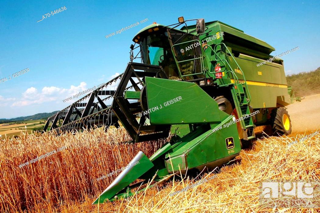 Stock Photo: Combine in wheat field.