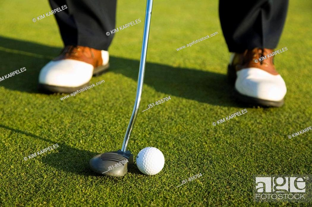 Stock Photo: GOLF Adult middle aged male practice putting on green at public course in Deerfield, Illinois, address ball with putter.