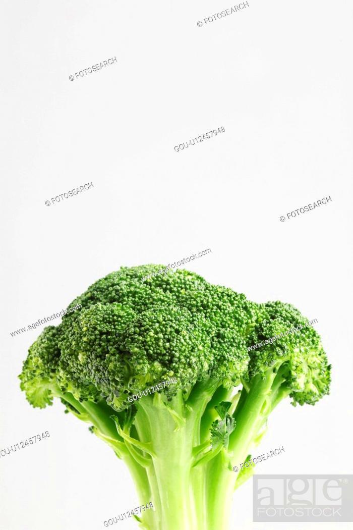Stock Photo: Broccoli.