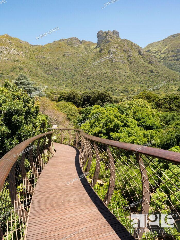 Imagen: Cape Town South Africa Kirstenbosch.