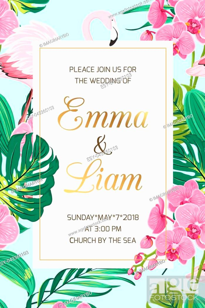 Wedding Marriage Event Invitation Card Template Tropical Jungle Rainforest Bright Green Palm Tree Stock Vector Vector And Low Budget Royalty Free Image Pic Esy 043360103 Agefotostock