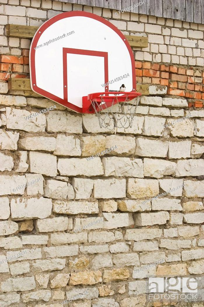 Stock Photo: Basketball, Basketball Hoop, Board, Brick Wall, Bricks.