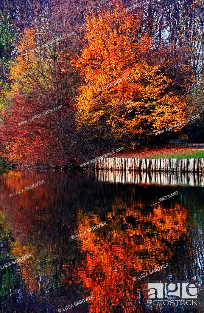 Stock Photo: The wonderful colours of autumn mirrored on a lake, Milano Italy.