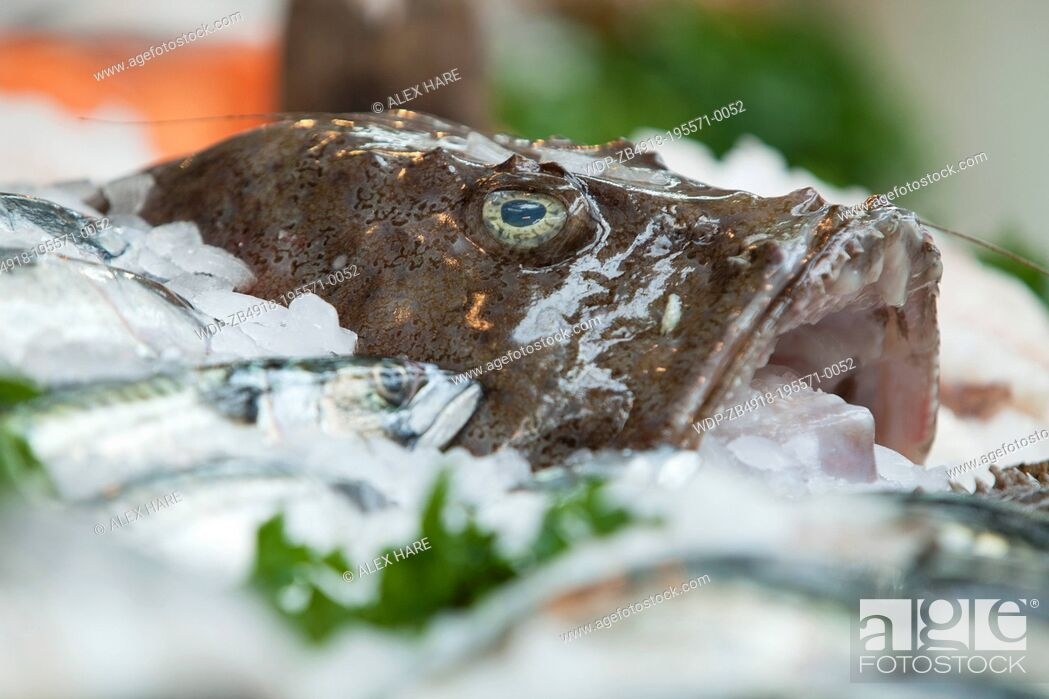 Imagen: A view of fresh fish on display in Borough Market.