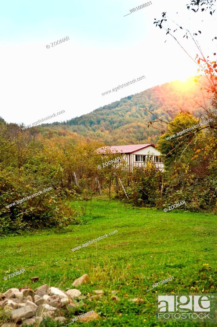 Stock Photo: Pretty country scene.